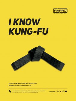 I Know Kung-Fu